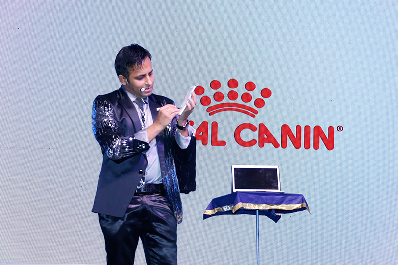 Interactive illusions for ROYAL CANIN Doctors Meet